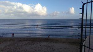surfcirceo4