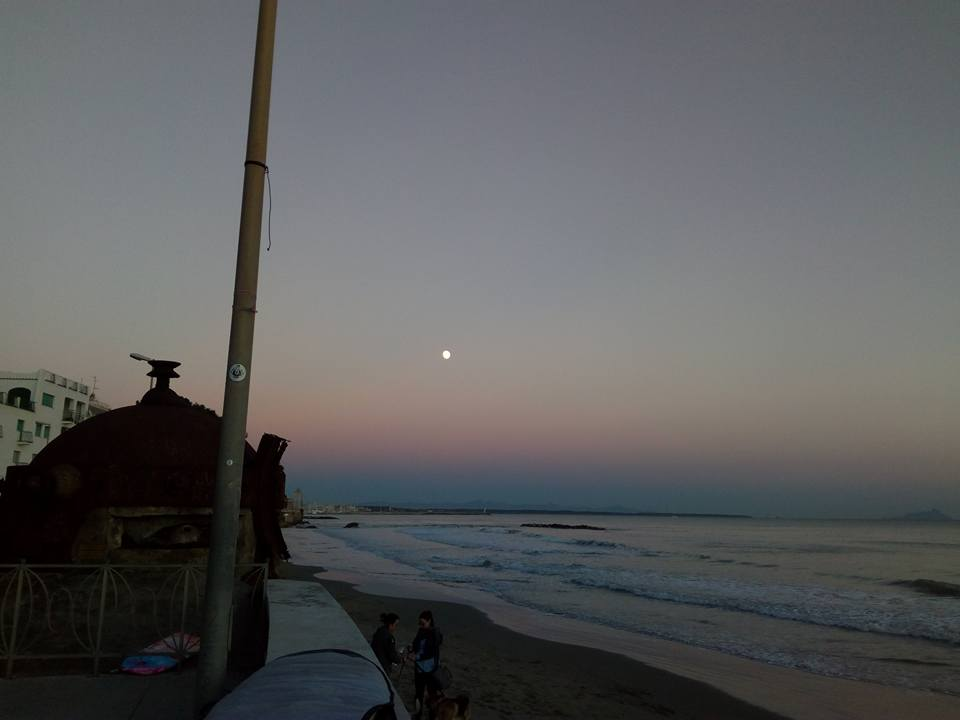 moonmarines
