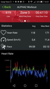 cardio surf