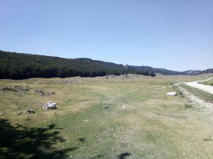 campo secco 2