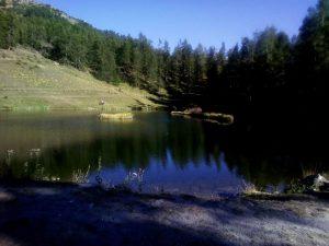 lago launee 1
