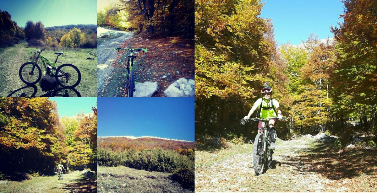 MTB: Torninparte enduro