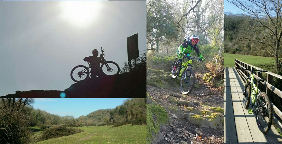 MTB: Formello new trails , Vacca e Toro