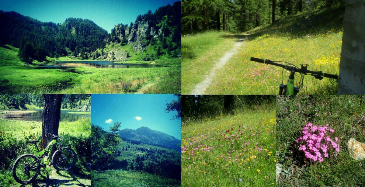 MTB: Lago Nero – Gr. Dalma
